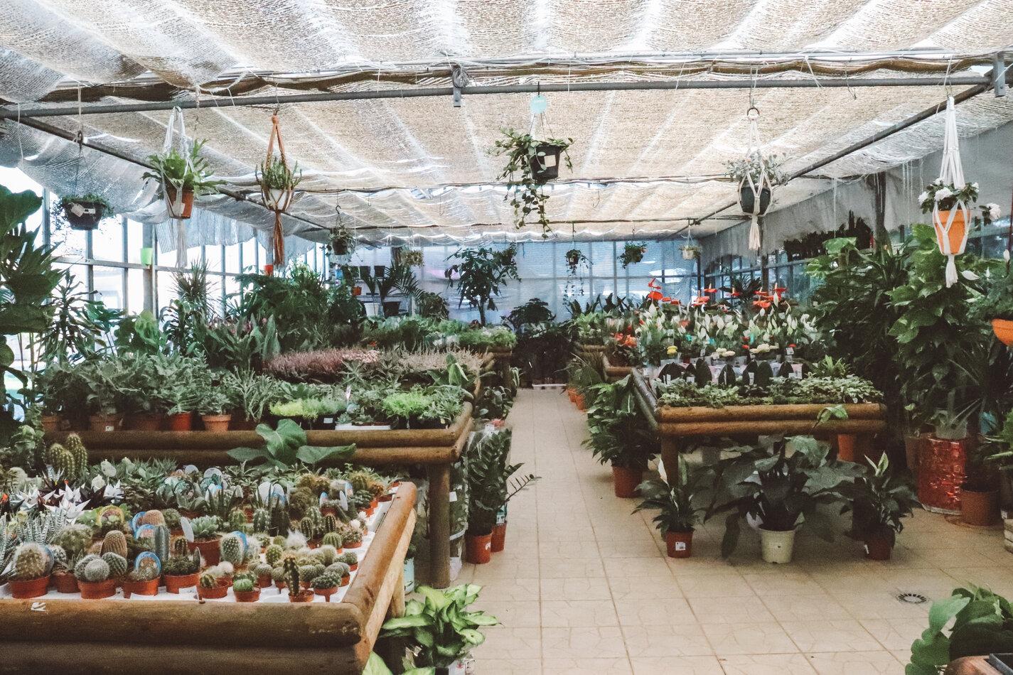 garden_guia12