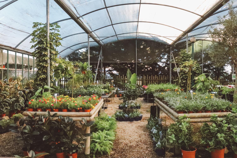 garden_guia4
